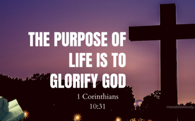 The Chief End of Man is to Glorify God