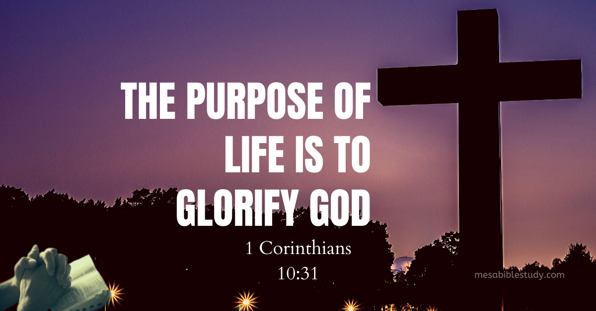 The Purpose of Life is to Glorify God