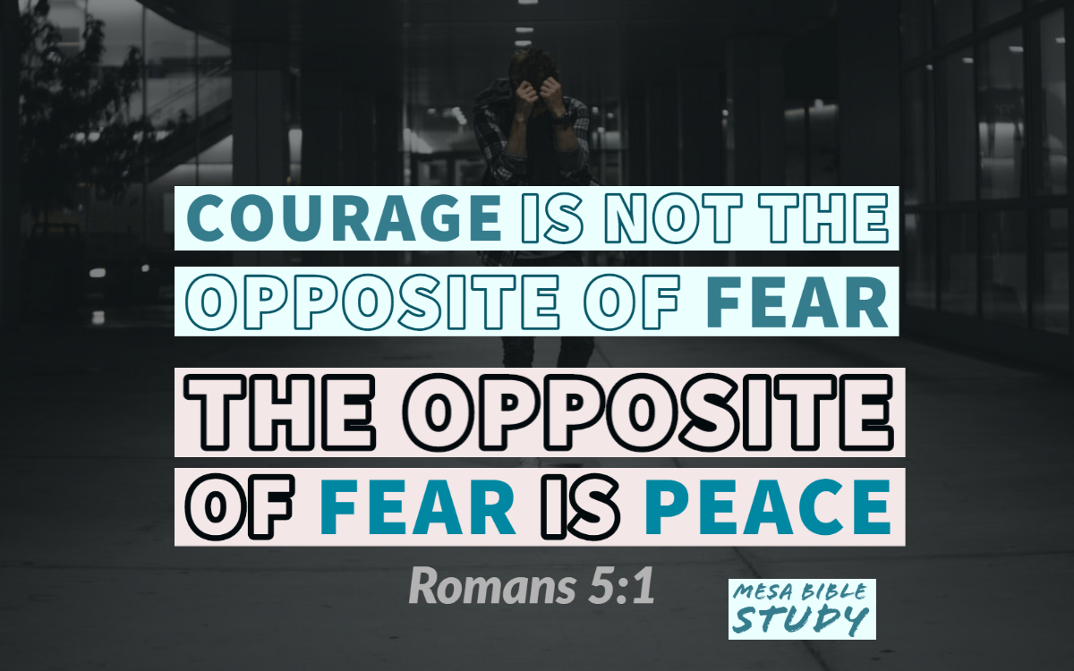 Courage is not the opposite of fear