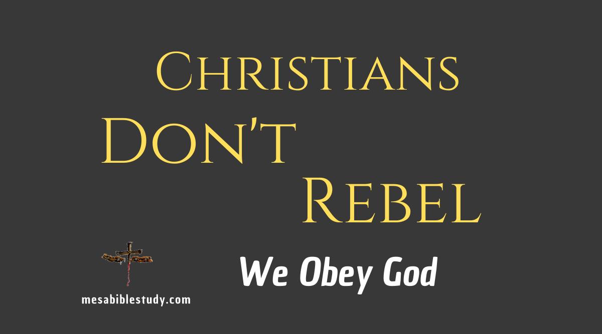 Christians don't rebel against civil authority